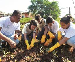 志愿者种树